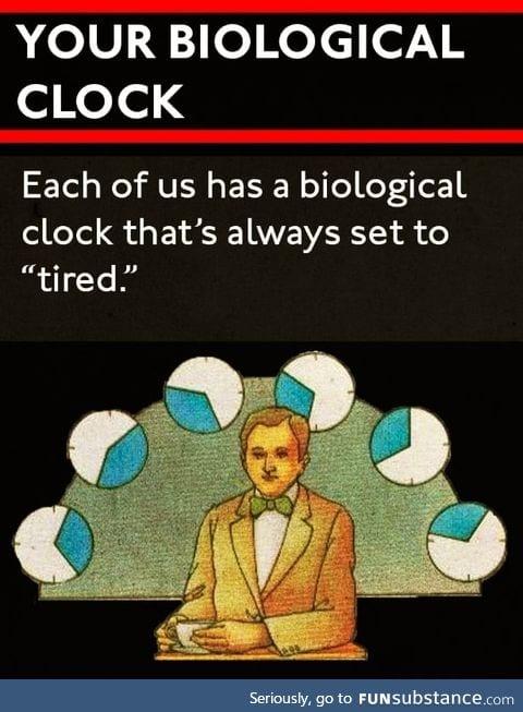Biological clocks
