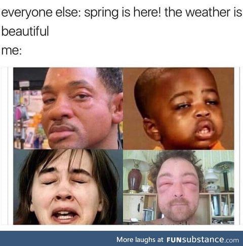 f*cking allergies