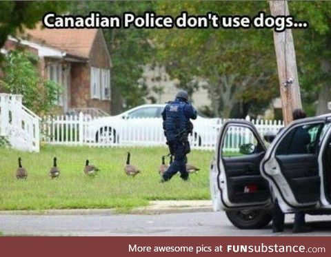 Silly canadians