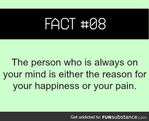 Fact #08
