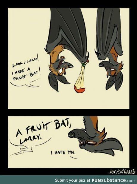 You fruitcake. People who make puns are batty.