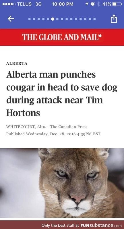 Most Canadian news story ever