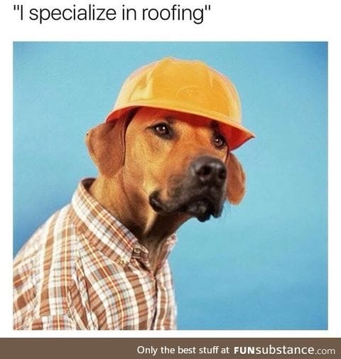 Dog specialty