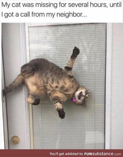 kitty katty