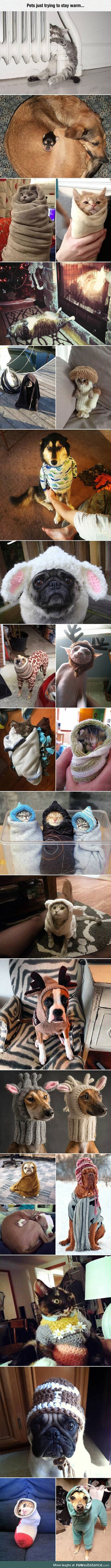 They look really cozy