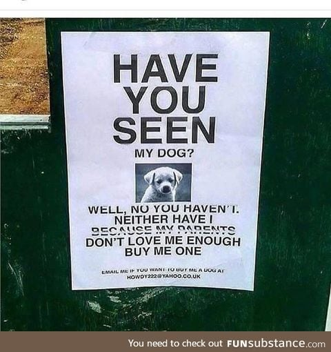 Have you seen his dog?
