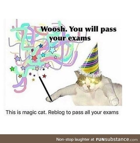Woooooo Second to last day of school for me! (but I have my chem final and I want to die.)