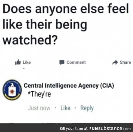 Your pal the CIA