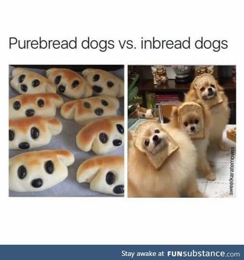 What bread is that?