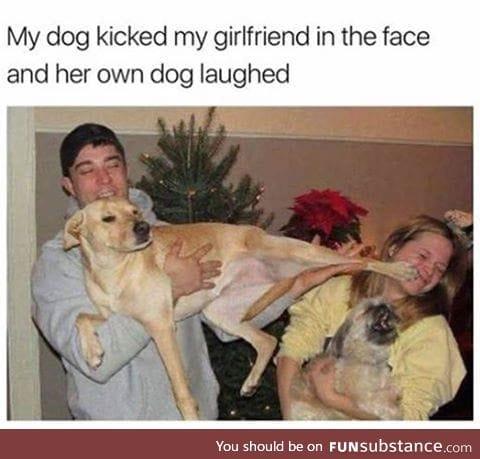 Those Dogo's