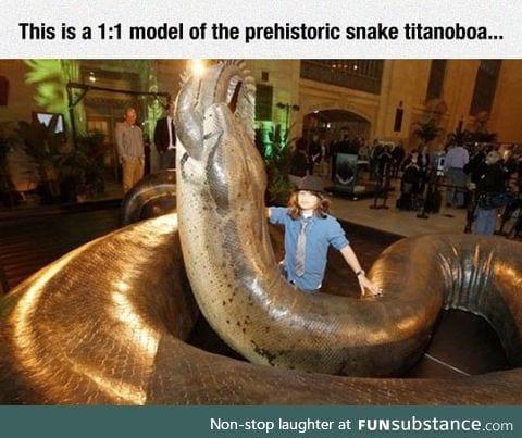 Giant prehistoric snake