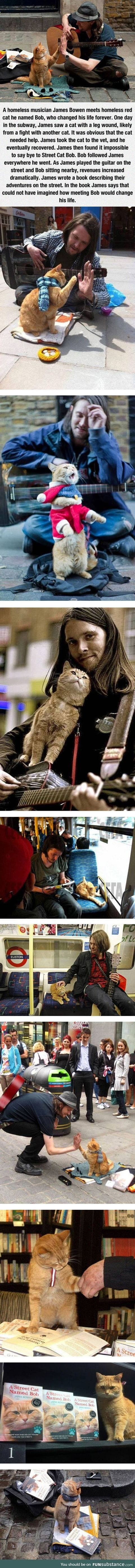 The homeless musician and his cat