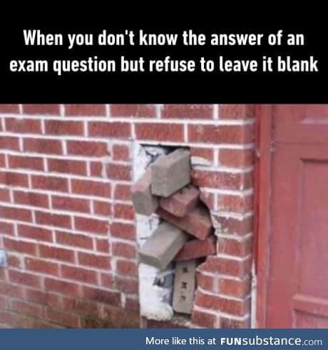 I like exams