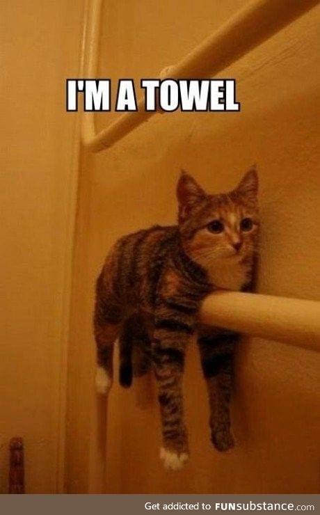 No you're a towel!