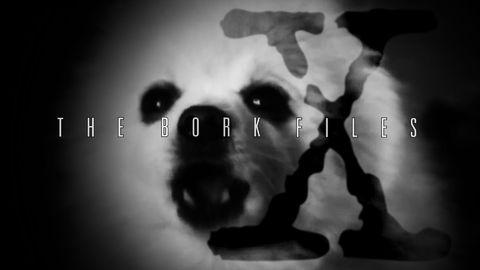 I want to borklieve.