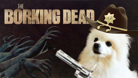 Spoiler Borks for The Walking Dawg.