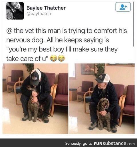 A doggo a day keeps the pain away