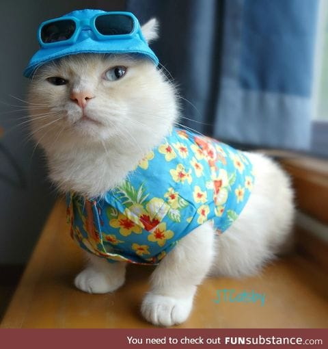Cate ready for summer