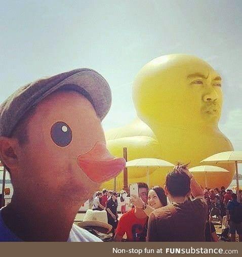 Duck swap