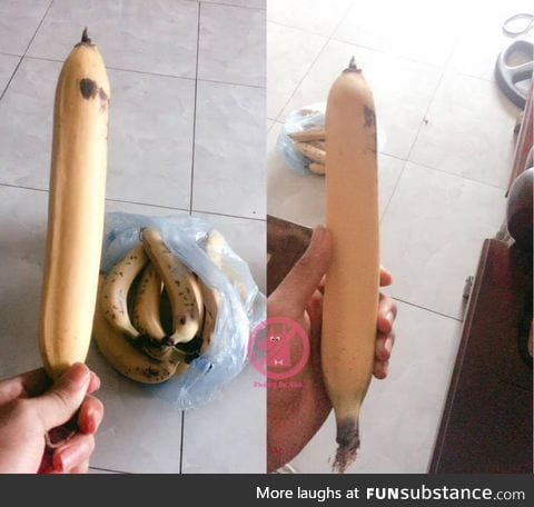 In case you have never seen a straight banana before