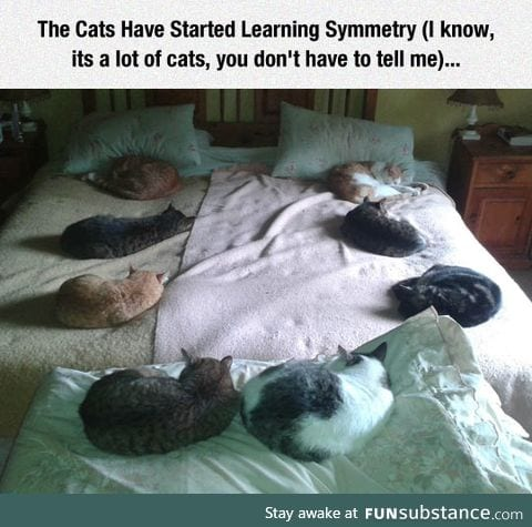 Learning symmetry