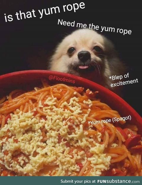 give the puppo the yum rope!