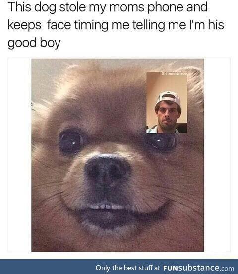You're a good boy