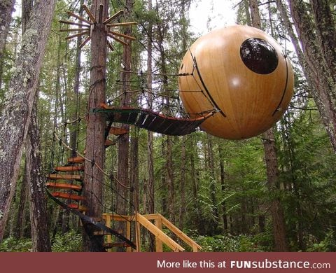 Suspended Eye Hotel in the rainforest