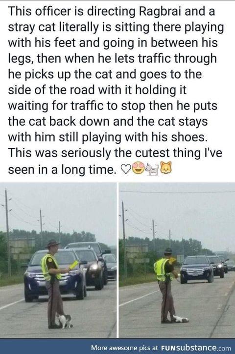Helping direct traffic