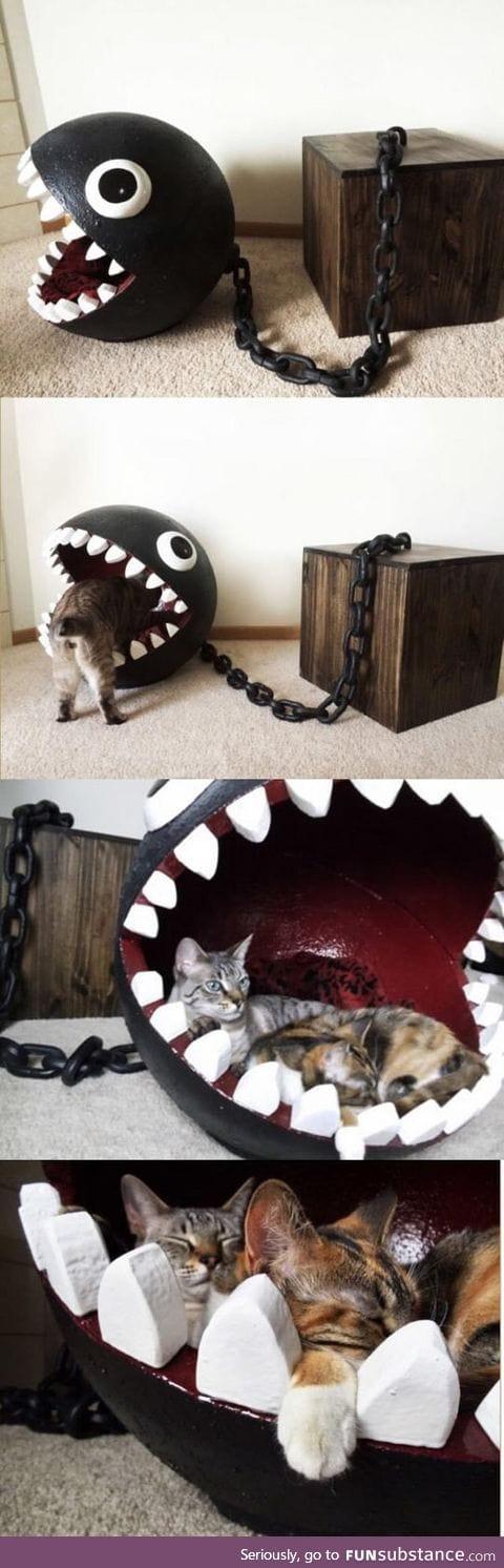 Chomp chomp kitty bed