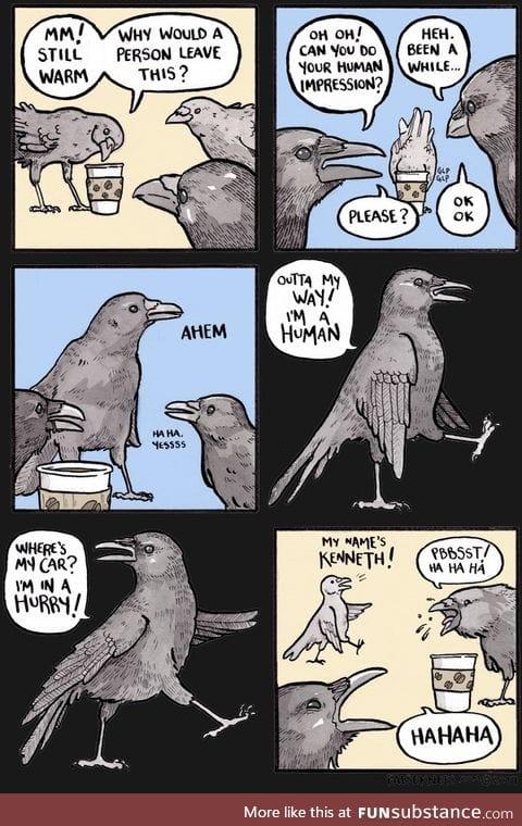 Look at me I'm a crow, kaw kaw