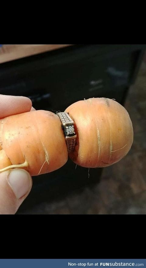 Diamond ring missing since 2004 turns up on garden carrot