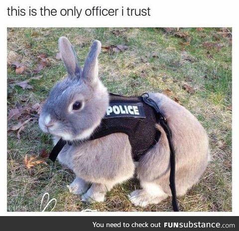 He protec