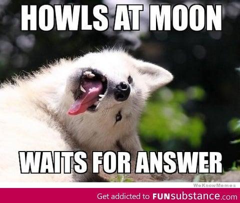 Oh Moon Moon...