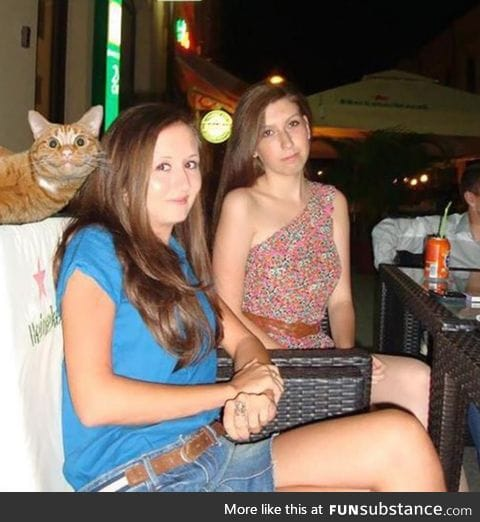 Cat is having a better time than either of the girls