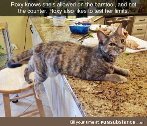 Roxy is a smart girl