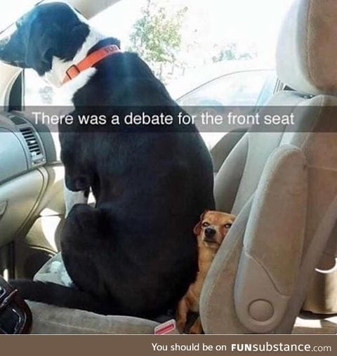 That one friend who blatantly disregards the rules of shotgun