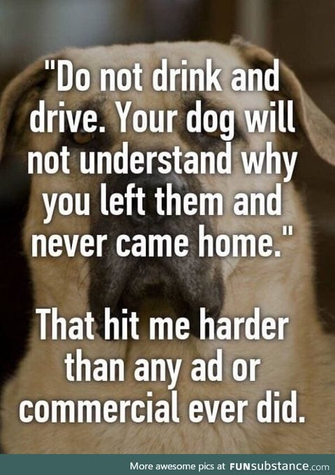 NEVER drink and drive