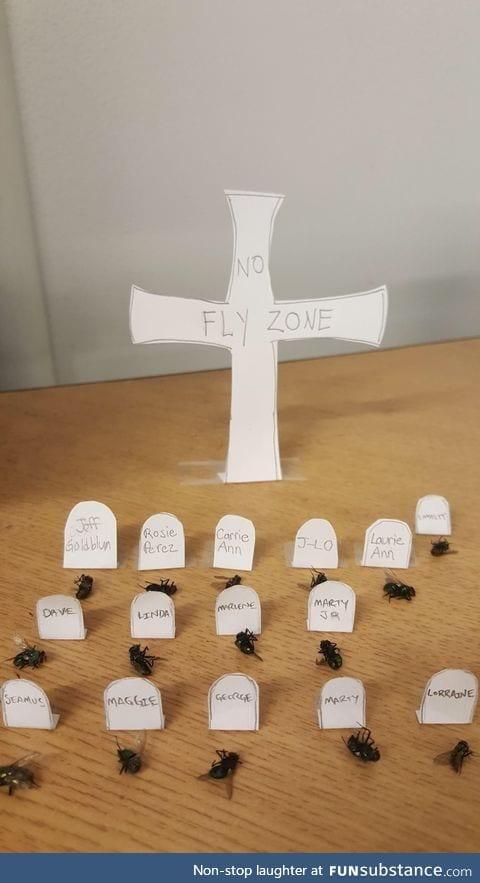 Fly graveyard