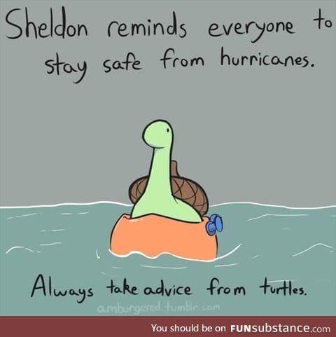 Everyone listen to Sheldon