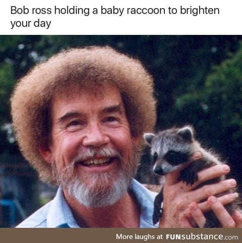 Bob Ross holding a baby raccoon