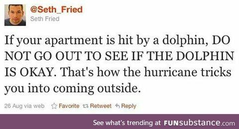 *dolphin noises*