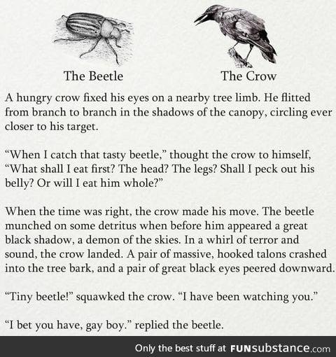 My friend sends me random shit 44.0 - That beetle got no chill