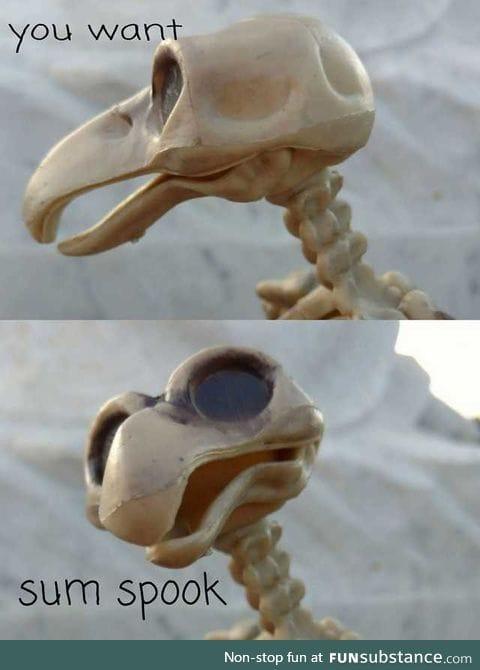 Swiggity, spooky, coming fo that booty.