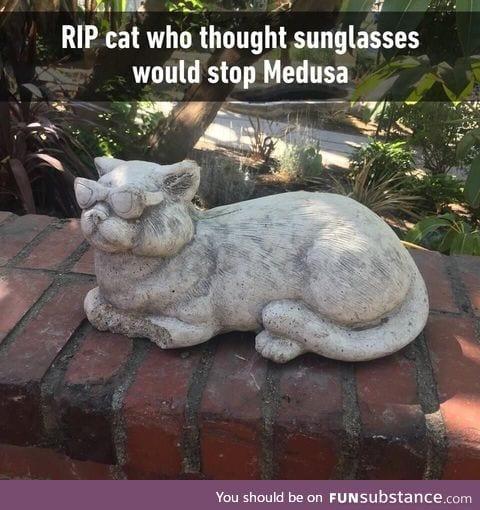 Rip cat