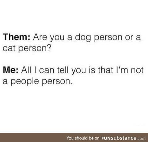 Dog or cat person