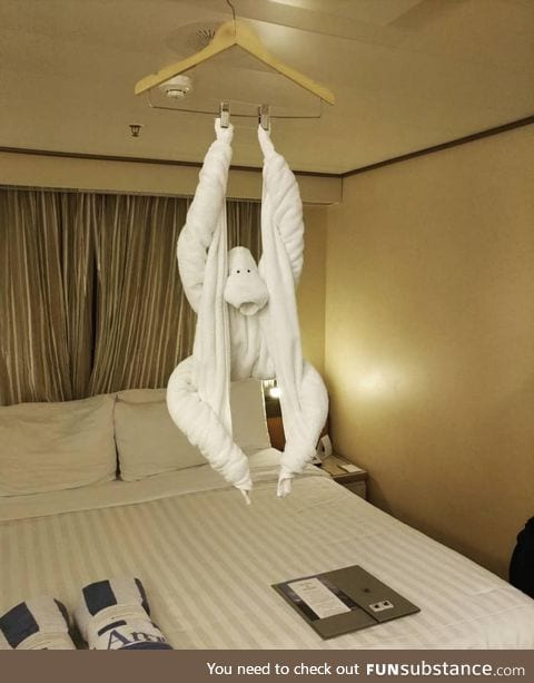 This towel art in a cruise ship cabin