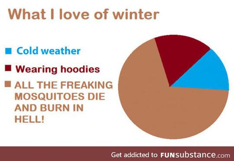 It's My Favorite Thing About Winter
