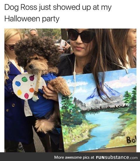 Dog ross
