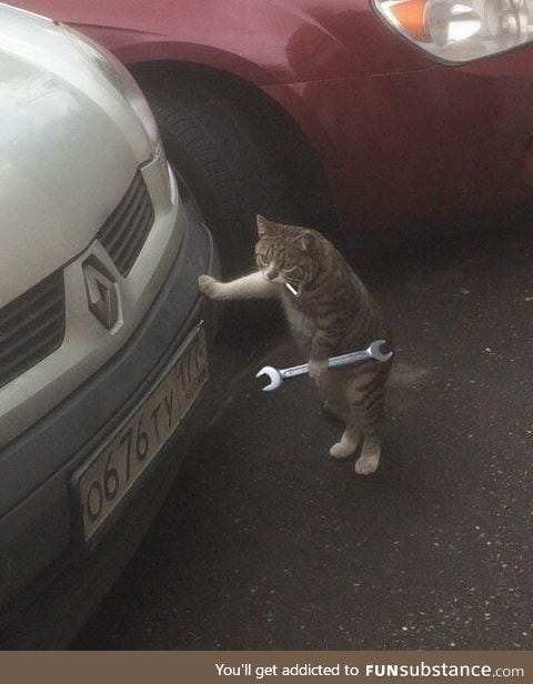 Alright, let's get that engine purrin again